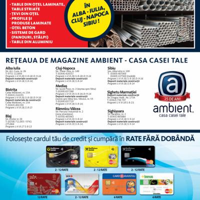 Revista Ambient 143 - Alba Iulia, Bistrita, Blaj, Medias