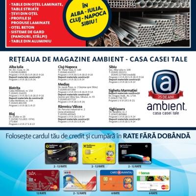 Revista Ambient 142 - Sibiu